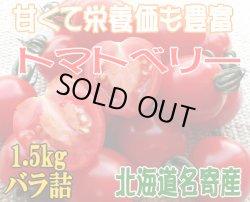 画像1: 北海道名寄産・訳あり【完熟トマトベリー】1.5kg/ミニトマト