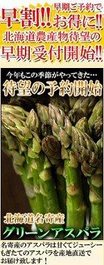 全国一の作付面積を誇る北海道名寄産グリーンアスパラ