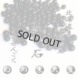 画像1: 【送料無料】幻の北海道産 黒千石大豆 1kg 北海道北竜