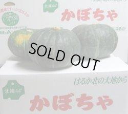 画像2: 北海道美深産 えびす南瓜 秀品5〜6玉で約10kg